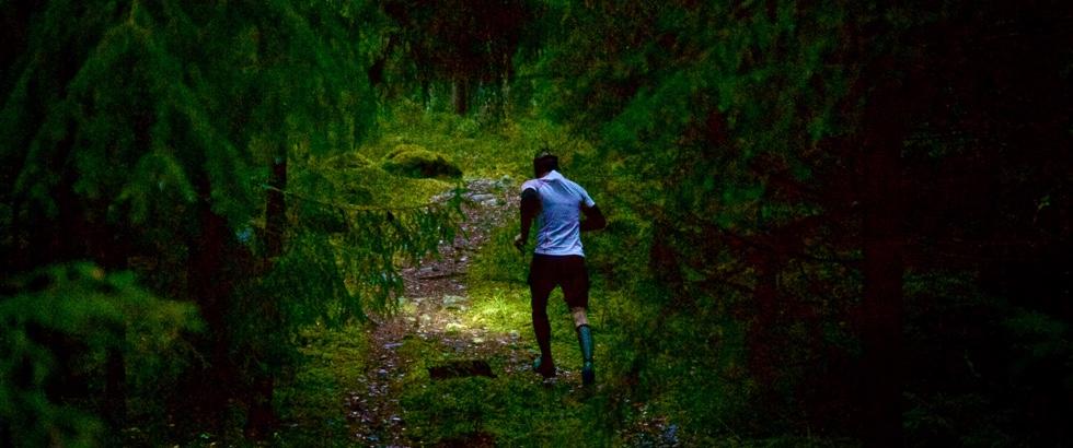 Pandelampeløb i skoven.
