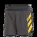 adidas TERREX Agravic Split Shorts Herre